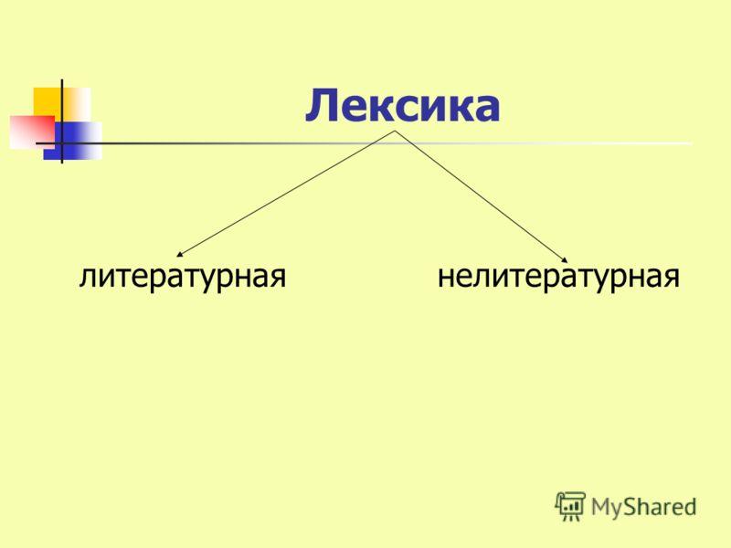 Лексика литературная нелитературная