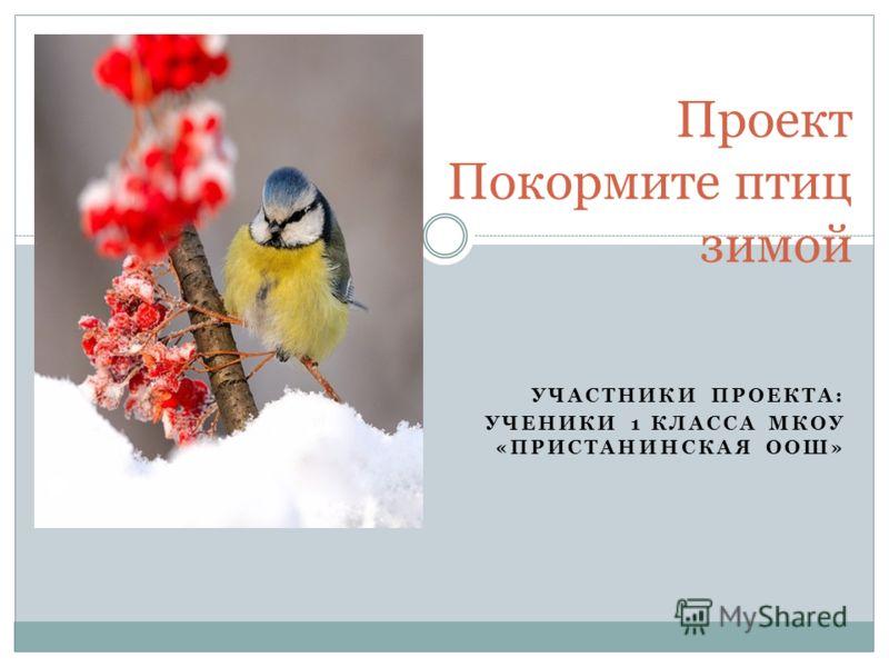 УЧАСТНИКИ ПРОЕКТА: УЧЕНИКИ 1 КЛАССА МКОУ «ПРИСТАНИНСКАЯ ООШ» Проект Покормите птиц зимой