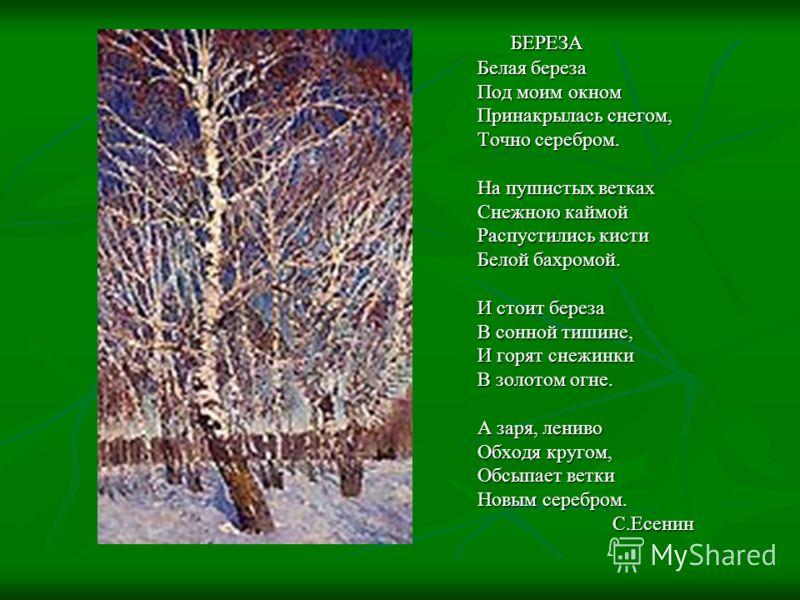 БЕРЕЗА БЕРЕЗА Белая береза Под моим окном Принакрылась снегом, Точно серебром. На пушистых ветках Снежною каймой Распустились кисти Белой бахромой. И стоит береза В сонной тишине, И горят снежинки В золотом огне. А заря, лениво Обходя кругом, Обсыпае