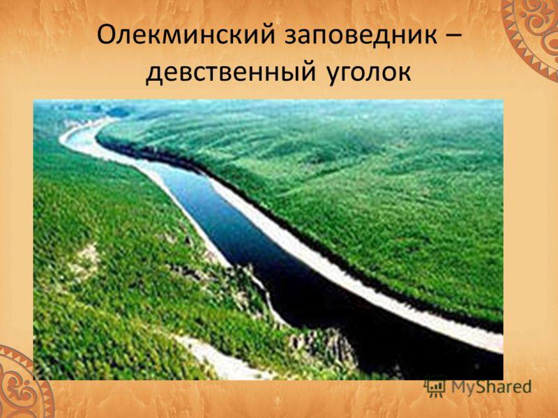 Заповедник расположен на севере Якутии, на территории Олекминского улуса. Вся территория заповедника занимает область вечной мерзлоты 100 - 200 м толщины, поверхностные слои которой летом оттаивают всего до 2,5-4 м. Тем не менее, интенсивная солнечна