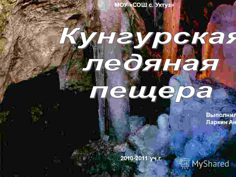 МОУ «СОШ с. Уктуз» 2010-2011 уч.г. Выполнил уч-ся 8кл. Ларкин Антон
