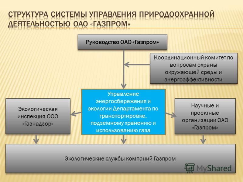 Руководство ОАО «Газпром» Координационный комитет по вопросам охраны окружающей среды и энергоэффективности Экологическая инспекция ООО «Газнадзор» Управление энергосбережения и экологии Департамента по транспортировке, подземному хранению и использо