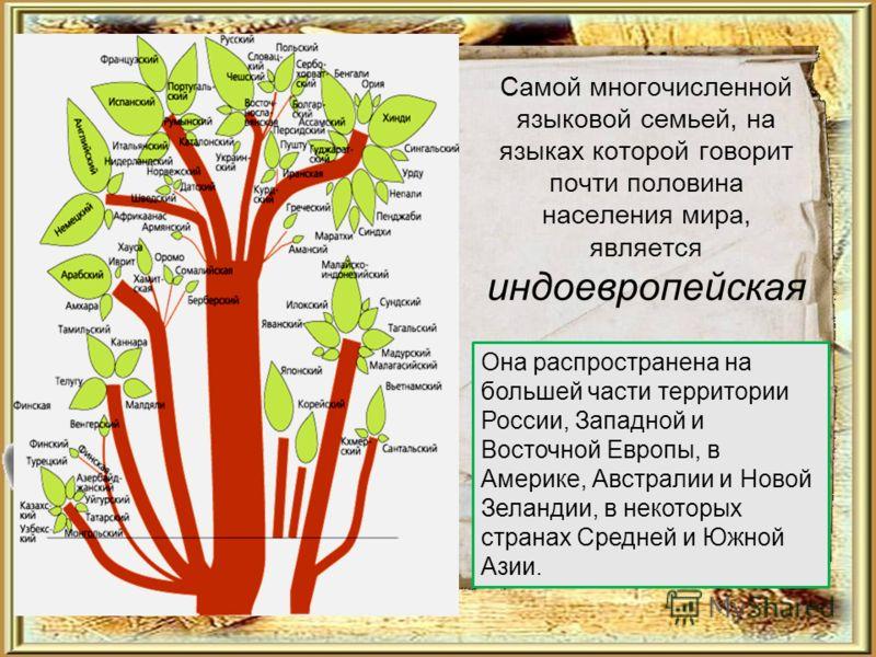 Самой многочисленной языковой семьей, на языках которой говорит почти половина населения мира, является индоевропейская Она распространена на большей части территории России, Западной и Восточной Европы, в Америке, Австралии и Новой Зеландии, в некот