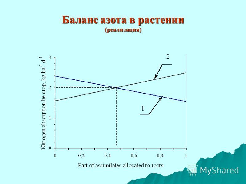 Баланс азота в растении (реализация)