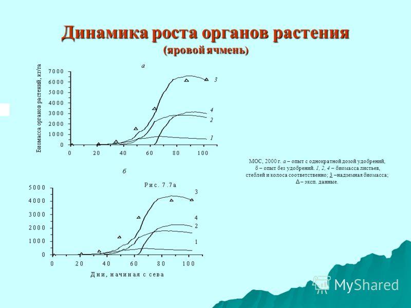 Динамика роста органов растения (яровой ячмень ) МОС, 2000 г. а – опыт с однократной дозой удобрений, б – опыт без удобрений. 1, 2, 4 – биомасса листьев, стеблей и колоса соответственно; 3 –надземная биомасса; – эксп. данные.