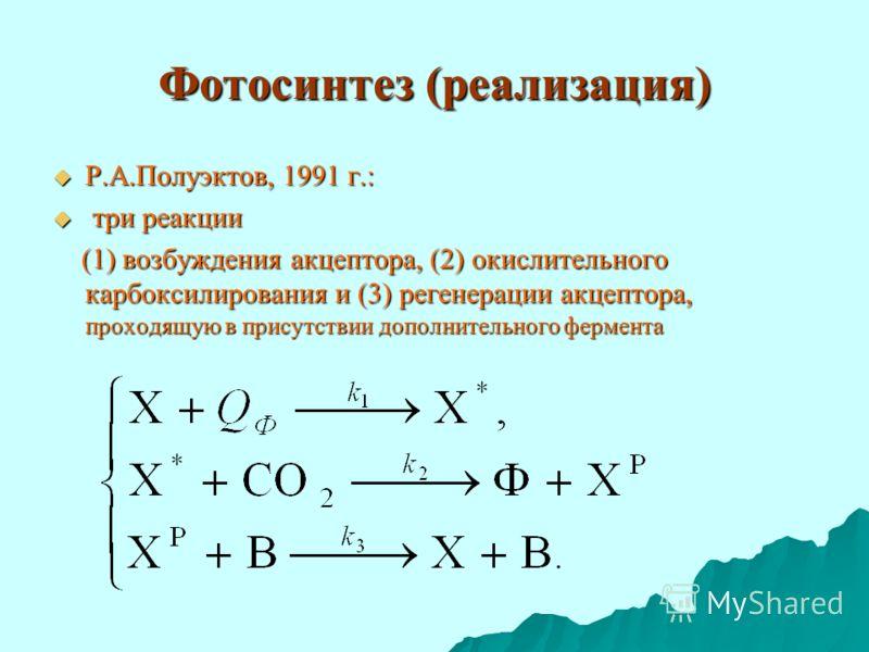 Фотосинтез (реализация) Р.А.Полуэктов, 1991 г.: Р.А.Полуэктов, 1991 г.: три реакции три реакции (1) возбуждения акцептора, (2) окислительного карбоксилирования и (3) регенерации акцептора, проходящую в присутствии дополнительного фермента (1) возбужд