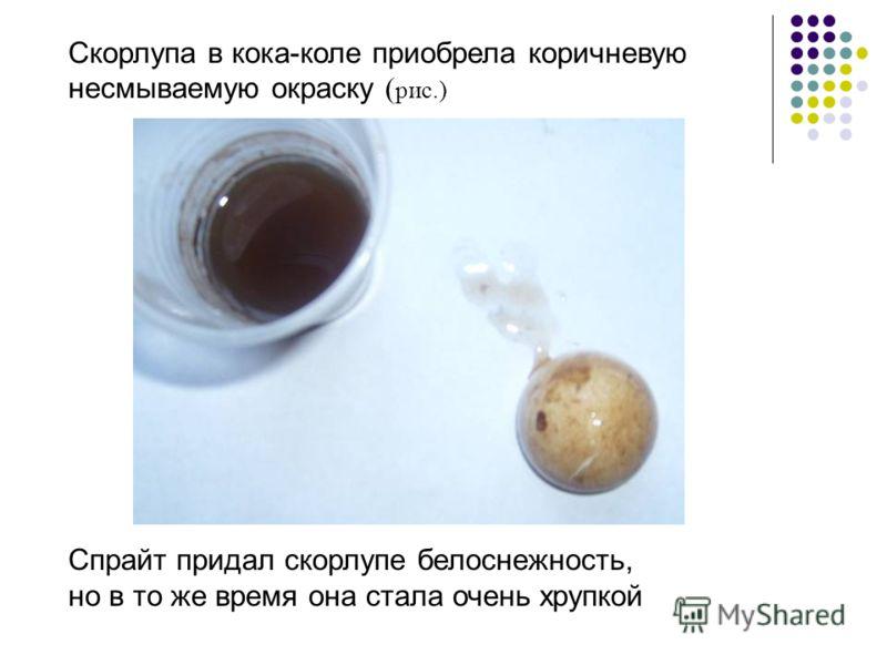 Скорлупа в кока-коле приобрела коричневую несмываемую окраску ( рис.) Спрайт придал скорлупе белоснежность, но в то же время она стала очень хрупкой