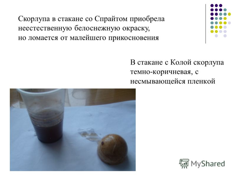 Скорлупа в стакане со Спрайтом приобрела неестественную белоснежную окраску, но ломается от малейшего прикосновения В стакане с Колой скорлупа темно-коричневая, с несмывающейся пленкой