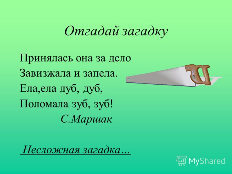 Игровой орфографический тренинг ПАРНЫЕ СОГЛАСНЫЕ