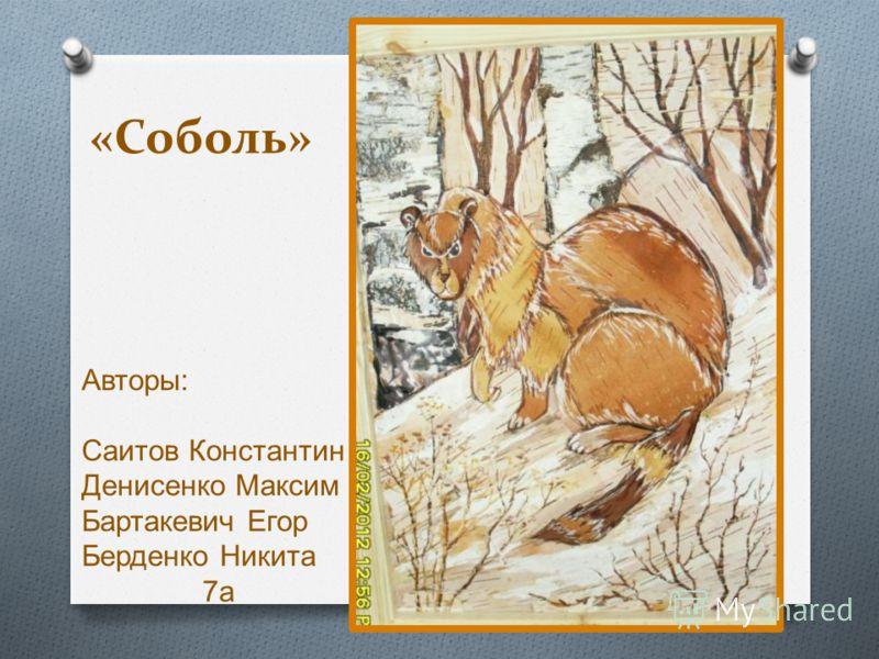 «Соболь» Авторы : Саитов Константин Денисенко Максим Бартакевич Егор Берденко Никита 7 а