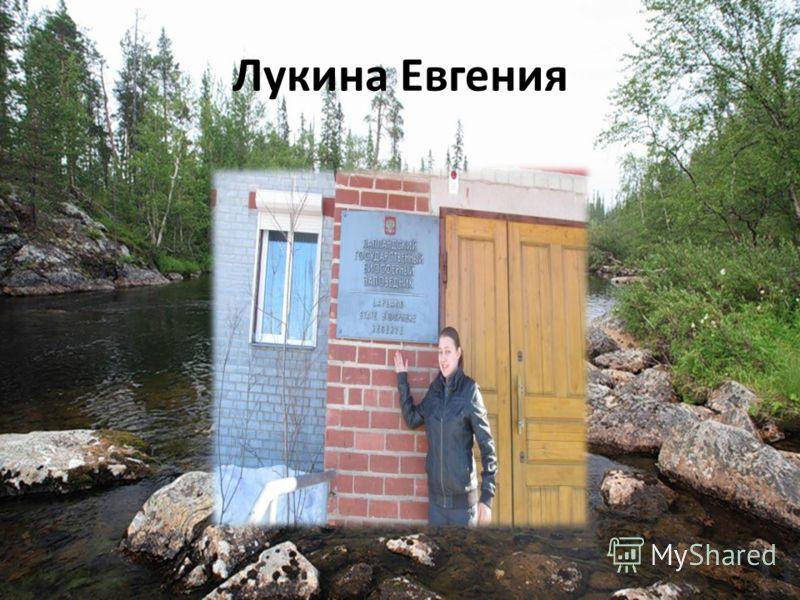 Лукина Евгения