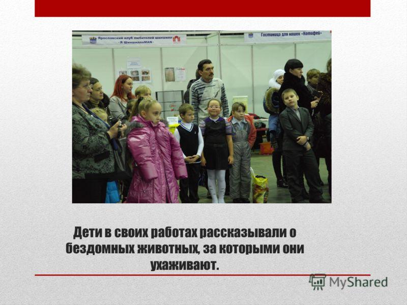 Дети в своих работах рассказывали о бездомных животных, за которыми они ухаживают.