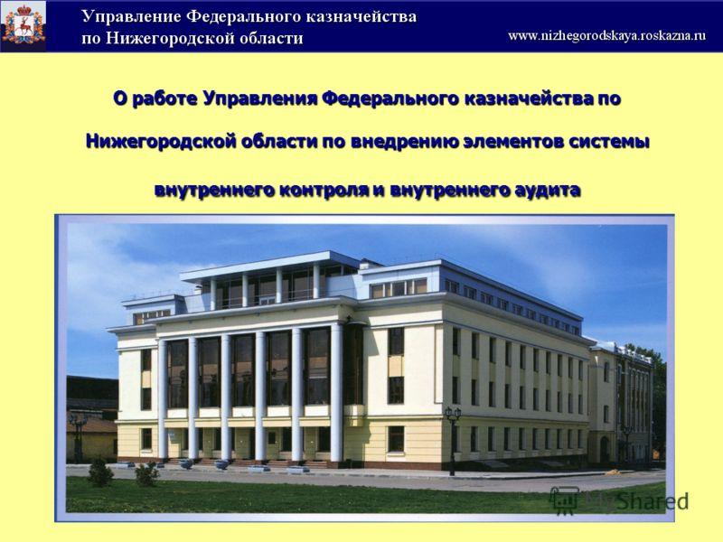 О работе Управления Федерального казначейства по Нижегородской области по внедрению элементов системы внутреннего контроля и внутреннего аудита