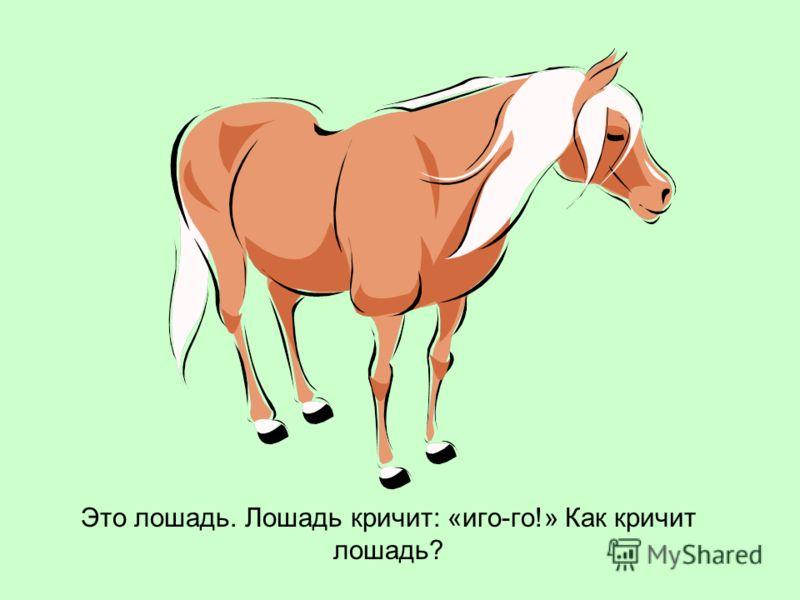 Это лошадь. Лошадь кричит: «иго-го!» Как кричит лошадь?