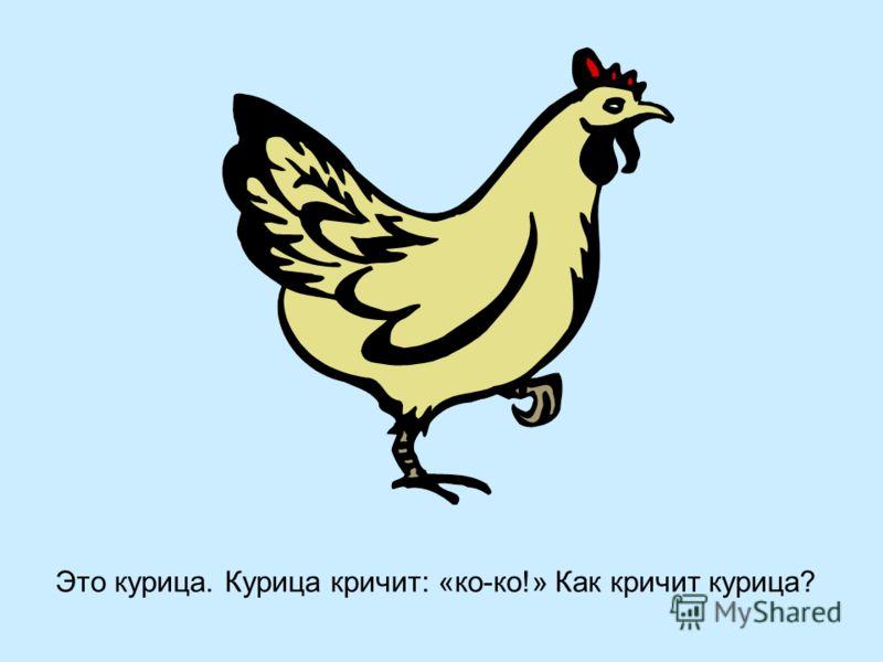 Это курица. Курица кричит: «ко-ко!» Как кричит курица?