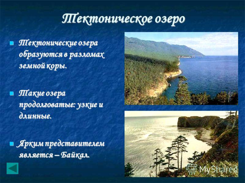 Тектоническое озеро Тектонические озера образуются в разломах земной коры. Тектонические озера образуются в разломах земной коры. Такие озера продолговатые: узкие и длинные. Такие озера продолговатые: узкие и длинные. Ярким представителем является –