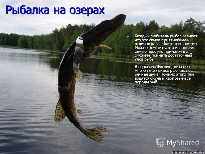 Рыбалка на озерах Каждый любитель рыбалки знает, что это самое приятнейшее и отлично расслабляющее занятие. Можно отметить, что используя самую простую приманку вы сможете поймать достаточный улов рыбы. В водоемах Финляндии особо много таких видов ры