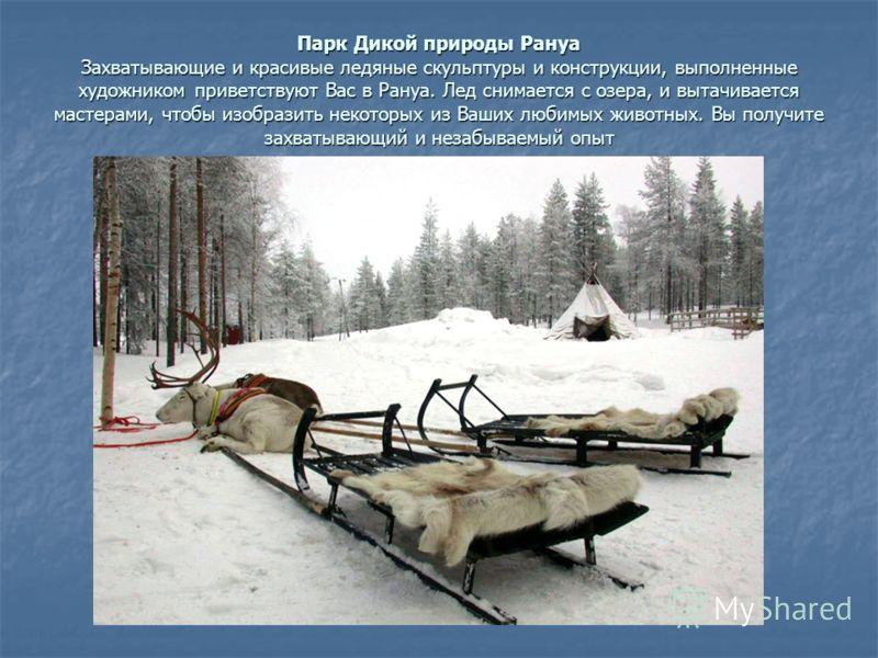 Парк Дикой природы Рануа Захватывающие и красивые ледяные скульптуры и конструкции, выполненные художником приветствуют Вас в Рануа. Лед снимается с озера, и вытачивается мастерами, чтобы изобразить некоторых из Ваших любимых животных. Вы получите за