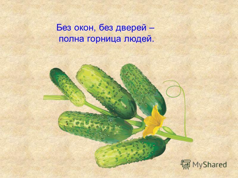 Овощи Загадки. Игра «Четвёртый лишний»