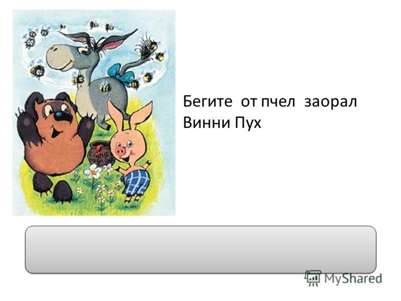 Бегите от пчел заорал Винни Пух Бегите от пчел! – заорал Винни Пух.