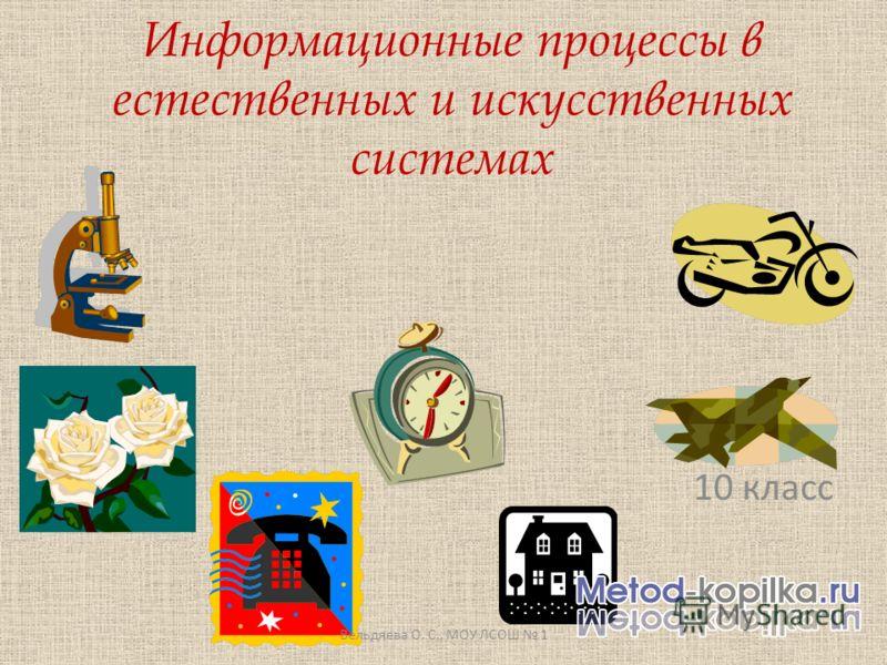 Информационные процессы в естественных и искусственных системах 10 класс Вельдяева О. С., МОУ ЛСОШ 1