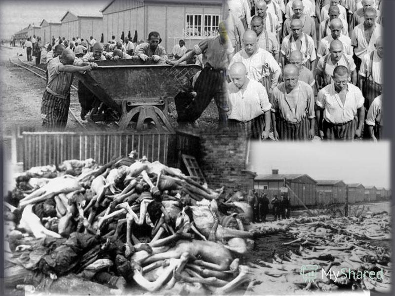 Дахау – первый концентрационный лагерь в фашистской Германии, создан в 1933 году в городе Дахау под Мюнхеном, ставший прототипом всех остальных лагерей. Через него прошли 200 тысяч человек: замучены или убиты официально 30 000, хотя изначально Дахау