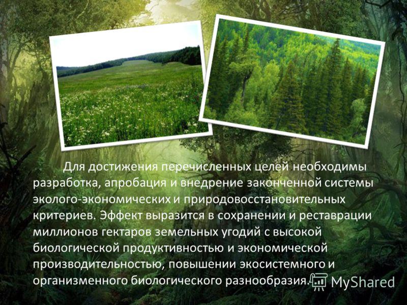 Для достижения перечисленных целей необходимы разработка, апробация и внедрение законченной системы эколого-экономических и природовосстановительных критериев. Эффект выразится в сохранении и реставрации миллионов гектаров земельных угодий с высокой