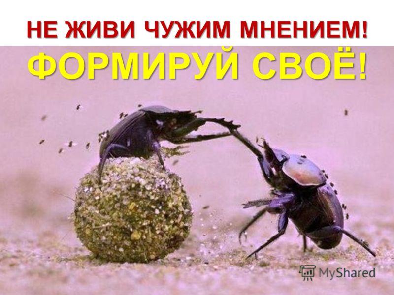 НЕ ЖИВИ ЧУЖИМ МНЕНИЕМ! ФОРМИРУЙ СВОЁ!