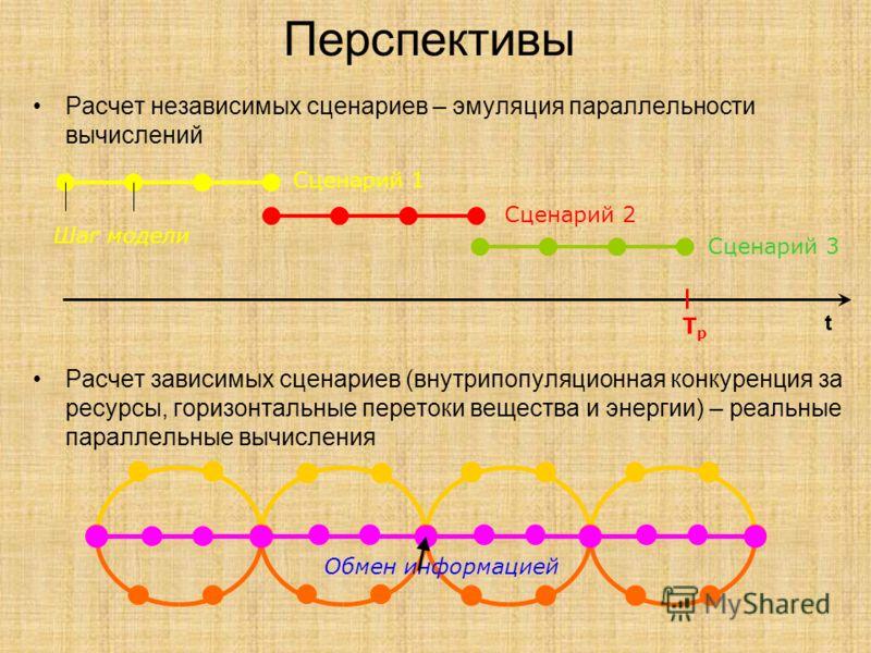 Расчет независимых сценариев – эмуляция параллельности вычислений Расчет зависимых сценариев (внутрипопуляционная конкуренция за ресурсы, горизонтальные перетоки вещества и энергии) – реальные параллельные вычисления Перспективы Сценарий 1 Шаг модели