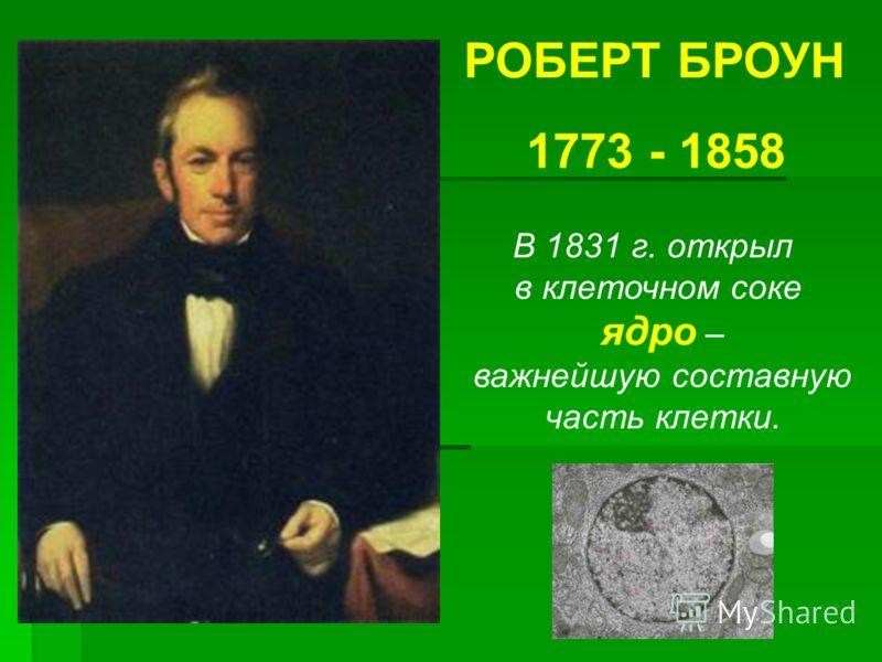 РОБЕРТ БРОУН 1773 - 1858 В 1831 г. открыл в клеточном соке ядро – важнейшую составную часть клетки.