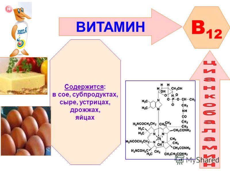ВИТАМИН B 12 Содержится: в сое, субпродуктах, сыре, устрицах, дрожжах, яйцах