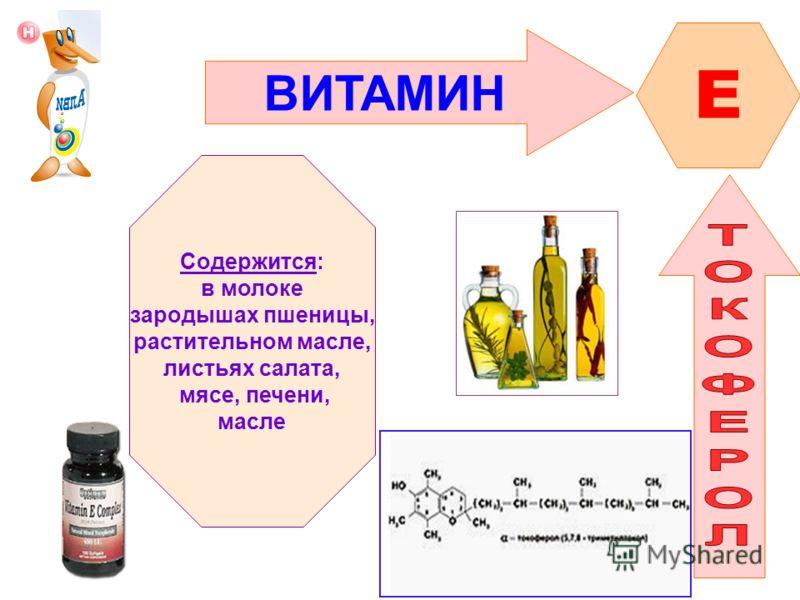 ВИТАМИН E Содержится: в молоке зародышах пшеницы, растительном масле, листьях салата, мясе, печени, масле