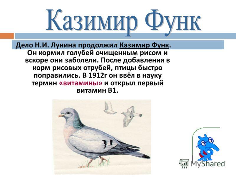 Дело Н. И. Лунина продолжил Казимир Функ. Он кормил голубей очищенным рисом и вскоре они заболели. После добавления в корм рисовых отрубей, птицы быстро поправились. В 1912 г он ввёл в науку термин « витамины » и открыл первый витамин В 1.