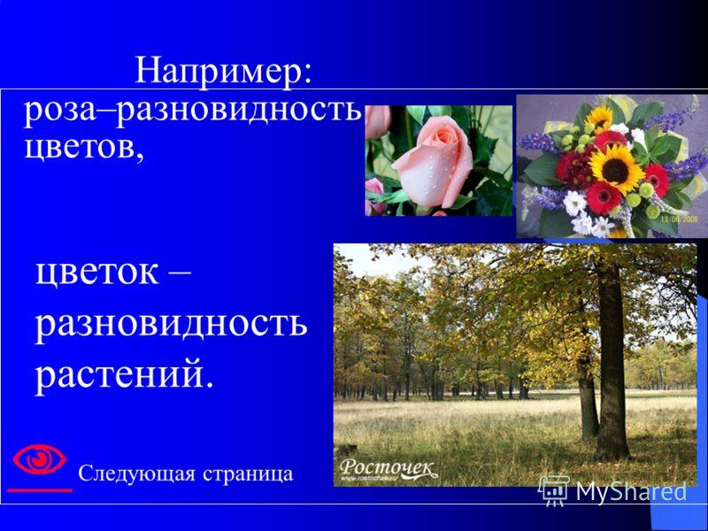 цветок – разновидность растений. Например: роза–разновидность цветов, Следующая страница