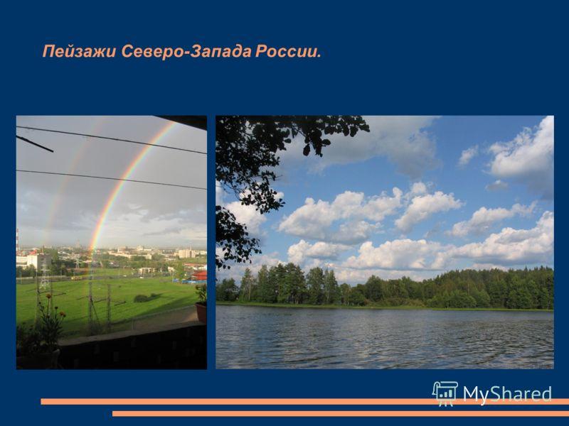 Пейзажи Северо-Запада России.
