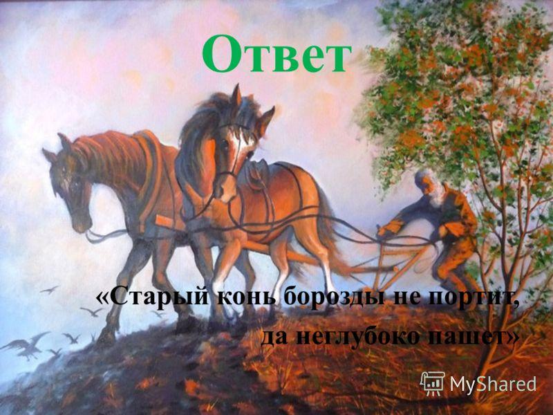 Ответ «Старый конь борозды не портит, да неглубоко пашет»