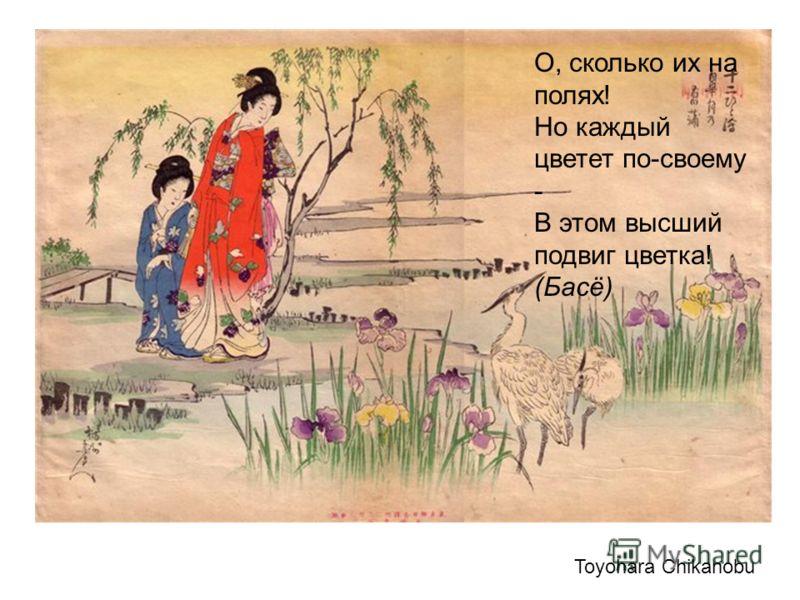 Toyohara Chikanobu О, сколько их на полях! Но каждый цветет по-своему - В этом высший подвиг цветка! (Басё)