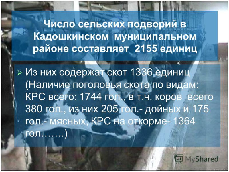 Число сельских подворий в Кадошкинском муниципальном районе составляет 2155 единиц Из них содержат скот 1336 единиц (Наличие поголовья скота по видам: КРС всего: 1744 гол., в т.ч. коров всего 380 гол., из них 205 гол.- дойных и 175 гол.- мясных, КРС