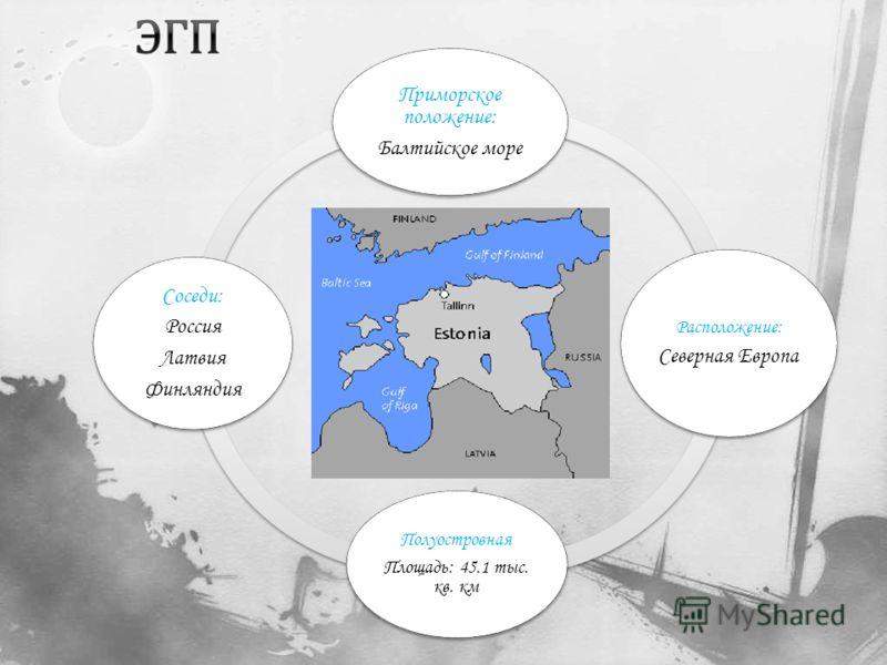 Приморское положение: Балтийское море Расположение: Северная Европа Полуостровная Площадь: 45.1 тыс. кв. км Соседи: Россия Латвия Финляндия
