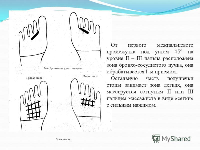 Зона легких. Зона бронхо- сосудистого пучка. Правая стопа Левая стопа От первого межпальцевого промежутка под углом 45 на уровне II – III пальца расположена зона бронхо-сосудистого пучка, она обрабатывается 1-м приемом. Остальную часть подушечки стоп