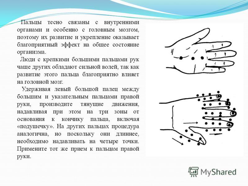 Пальцы тесно связаны с внутренними органами и особенно с головным мозгом, поэтому их развитие и укрепление оказывает благоприятный эффект на общее состояние организма. Люди с крепкими большими пальцами рук чаще других обладают сильной волей, так как