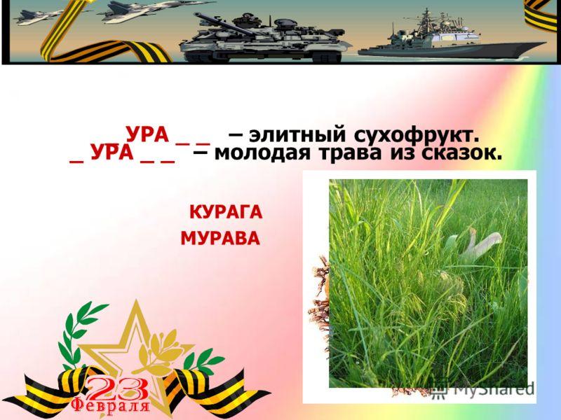 _ УРА _ _ – элитный сухофрукт. КУРАГА _ УРА _ _ – молодая трава из сказок. МУРАВА