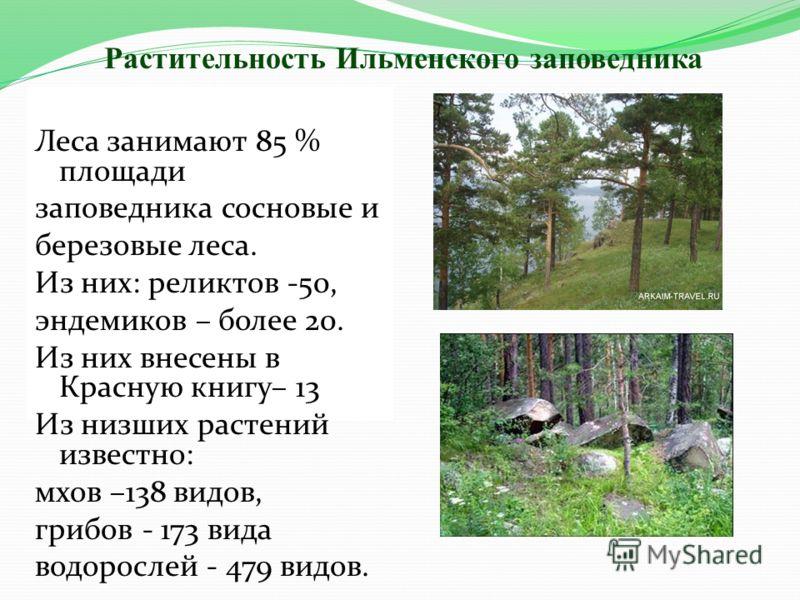 Леса занимают 85 % площади заповедника сосновые и березовые леса. Из них: реликтов -50, эндемиков – более 20. Из них внесены в Красную книгу– 13 Из низших растений известно: мхов –138 видов, грибов - 173 вида водорослей - 479 видов. Растительность Ил