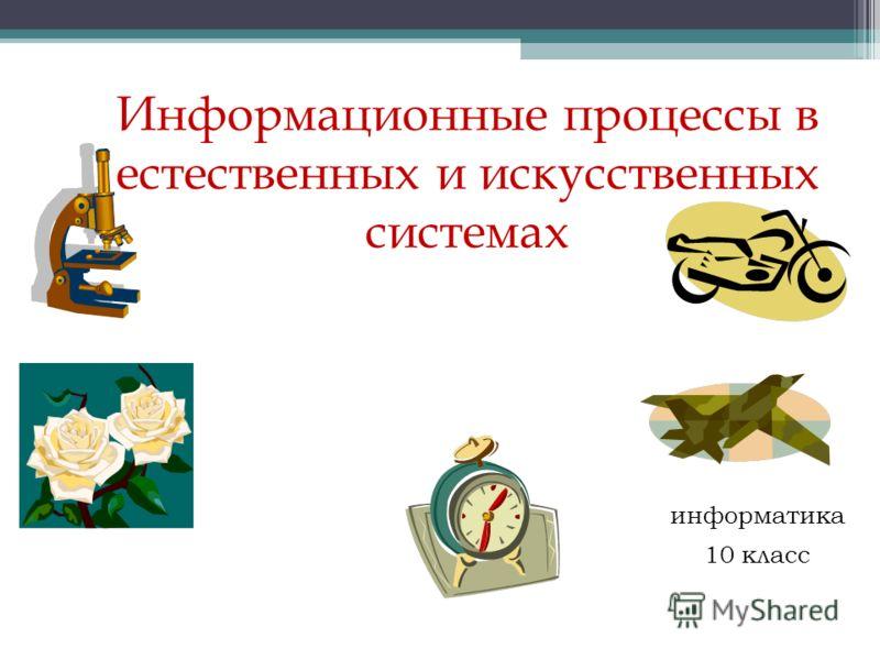 Информационные процессы в естественных и искусственных системах информатика 10 класс