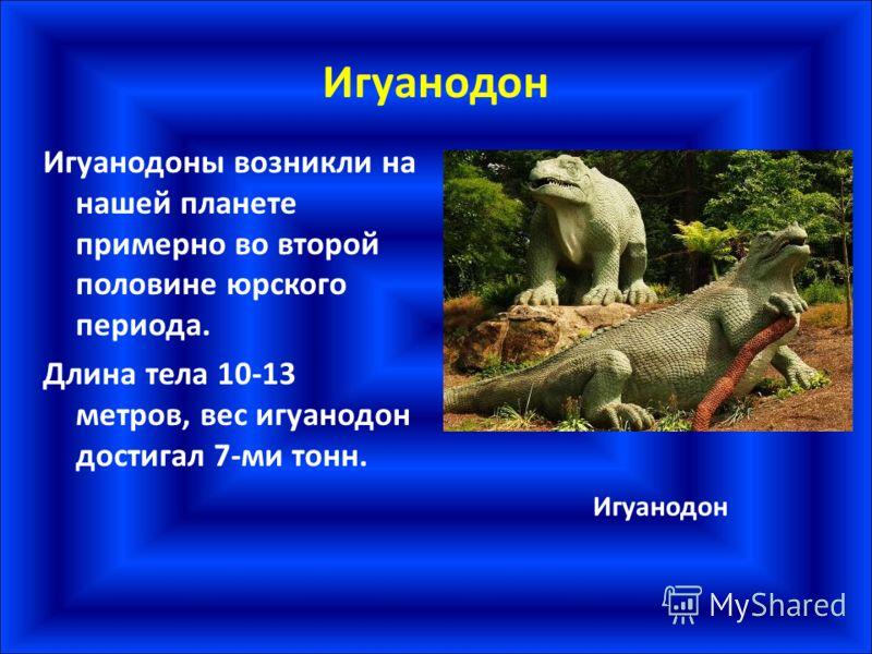 Игуанодон Игуанодоны возникли на нашей планете примерно во второй половине юрского периода. Длина тела 10-13 метров, вес игуанодон достигал 7-ми тонн. Игуанодон