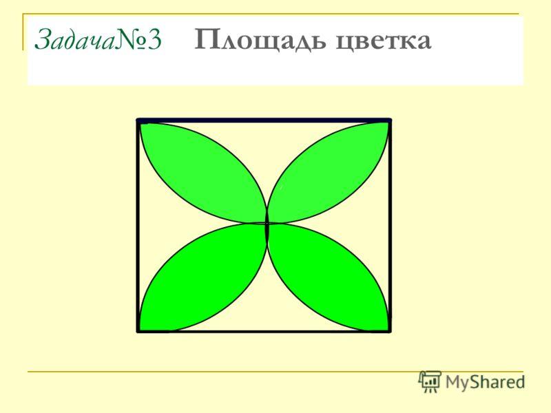 Задача3 Площадь цветка