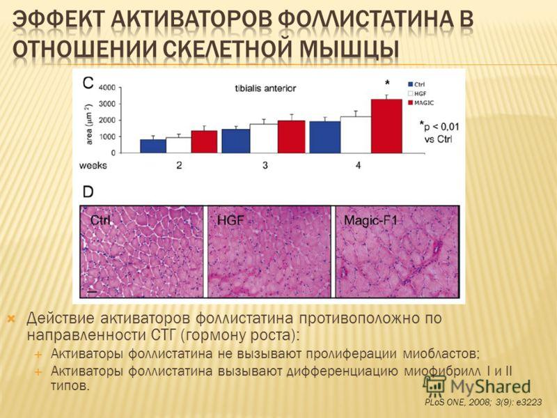 Действие активаторов фоллистатина противоположно по направленности СТГ (гормону роста): Активаторы фоллистатина не вызывают пролиферации миобластов; Активаторы фоллистатина вызывают дифференциацию миофибрилл I и II типов. PLoS ONE, 2008; 3(9): e3223