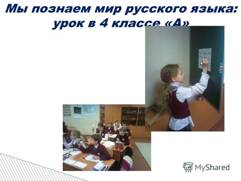 Мы познаем мир русского языка: урок в 4 классе «А»