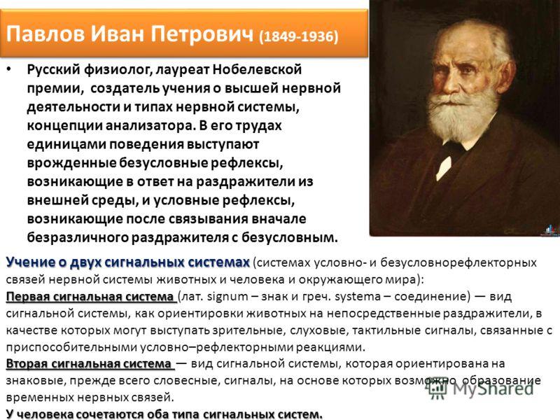 Павлов Иван Петрович (1849-1936) Русский физиолог, лауреат Нобелевской премии, создатель учения о высшей нервной деятельности и типах нервной системы, концепции анализатора. В его трудах единицами поведения выступают врожденные безусловные рефлексы,
