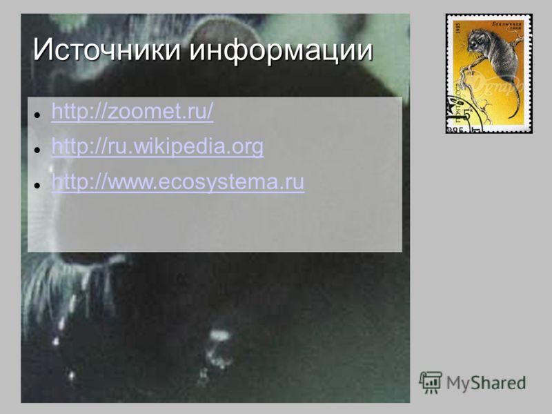http://zoomet.ru/ http://ru.wikipedia.org http://www.ecosystema.ru Источники информации